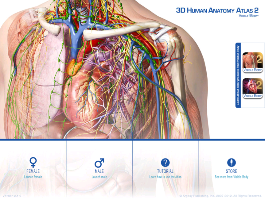 Visible Body anatomy app for the iPad | Medical Apps for