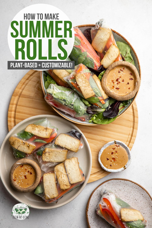 Vegan Summer Rolls With Braised Tofu