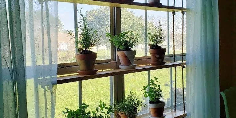 Hanging Herb Garden, A Living Window Display - Tales From Home