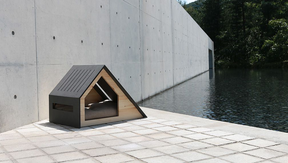 Buy Modern Dog House