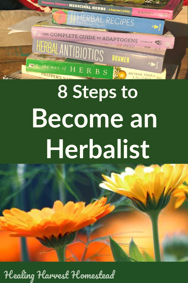 So, You Want to Become an Herbalist? Here are Eight Simple Steps You'll Need to Start Learning About Herbalism Now — All Posts Healing Harvest Homestead