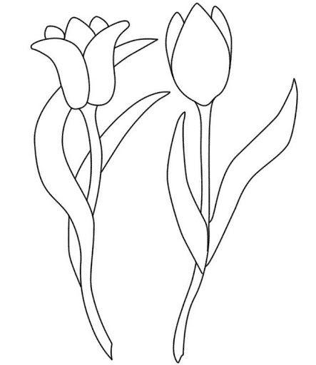 Tulipanes Tulipanes Para Colorear Dibujos De Flores Sencillos Tulipanes Dibujo