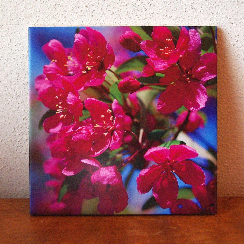 Spring crabapple flowers ceramic tile trivet malus prairifire spring crabapple flowers ceramic tile trivet malus prairifire pink spring flowers color dailygadgetfo Choice Image