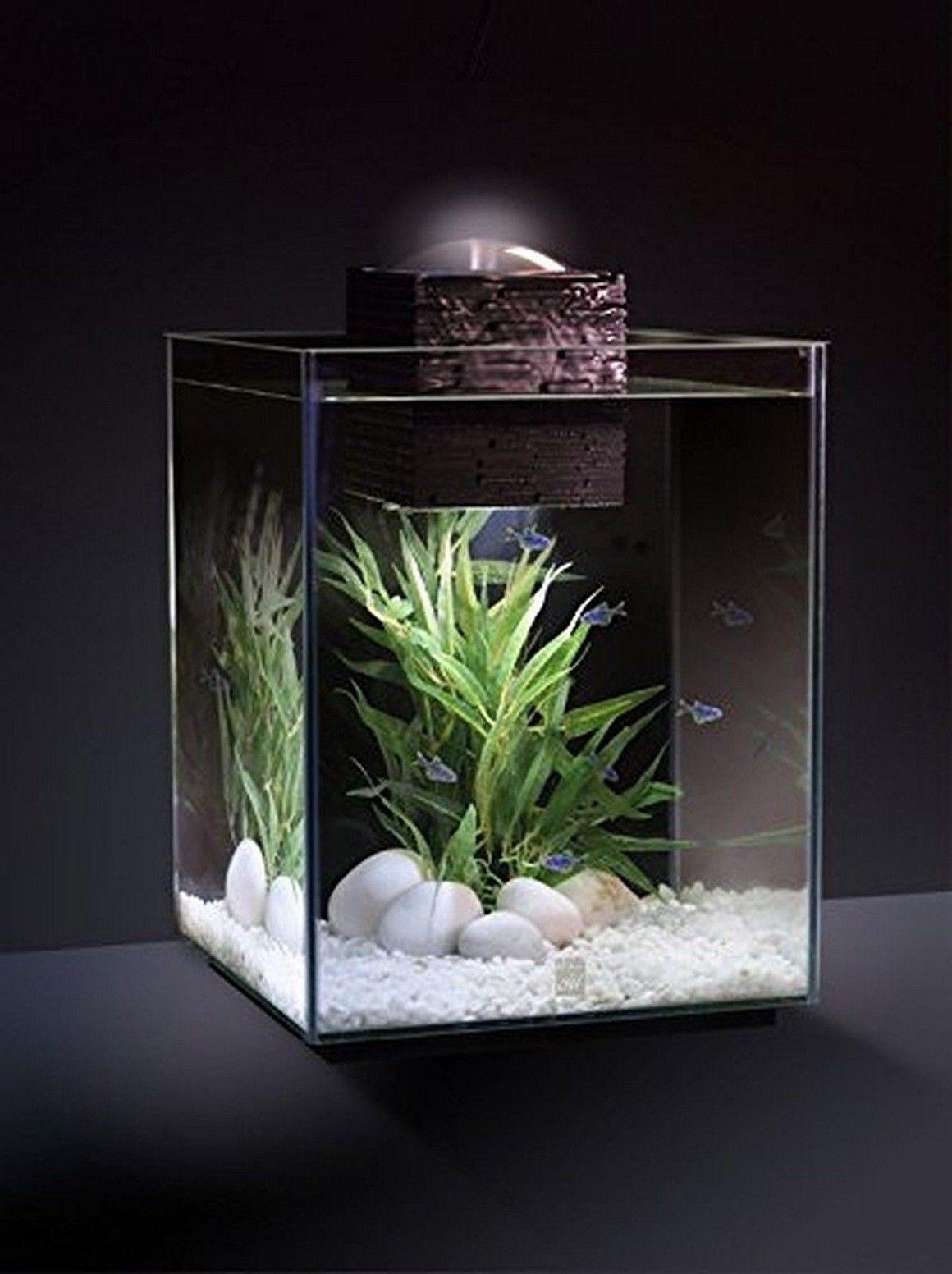 Aquarium Decoration Ideas 5 Gallon Betta Aquario Plantado Mini Jardins