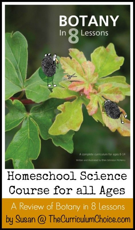 Botany In 8 Lessons Review Middle School Science Curriculum
