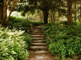 Woodland Garden Design garden design repinned on toby designs seating in a woodland garden Woodland Garden Design Ideas Pictures Remodel And Decor