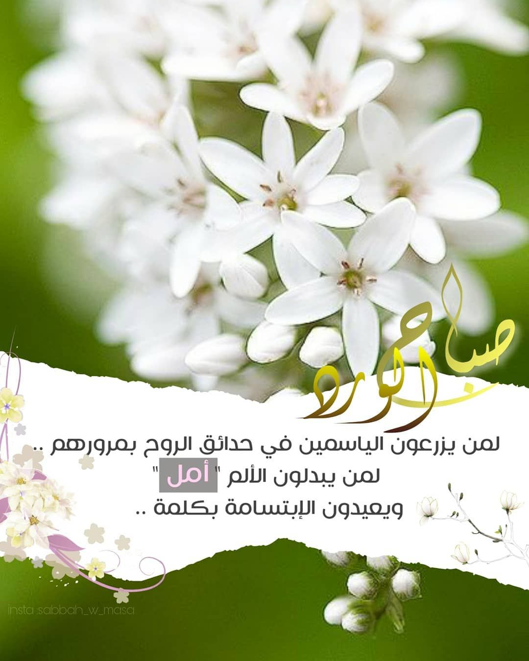 Sabbah W Masa Shared A Photo On Instagram صباح الورد لمن يزرعون الياسمين في حدائق الروح Morning Greeting Morning Images Jumma Mubarak Images
