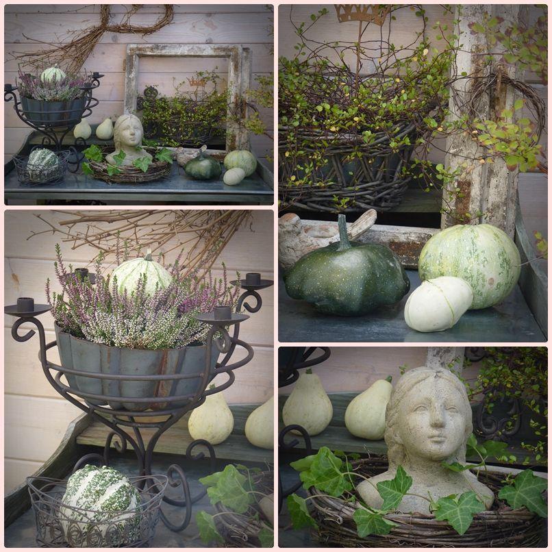 Der Pflanztisch Und Seine Herbstdeko Wohnen Und Garten Foto Herbst Dekoration Wohnen Und Garten Pflanzen