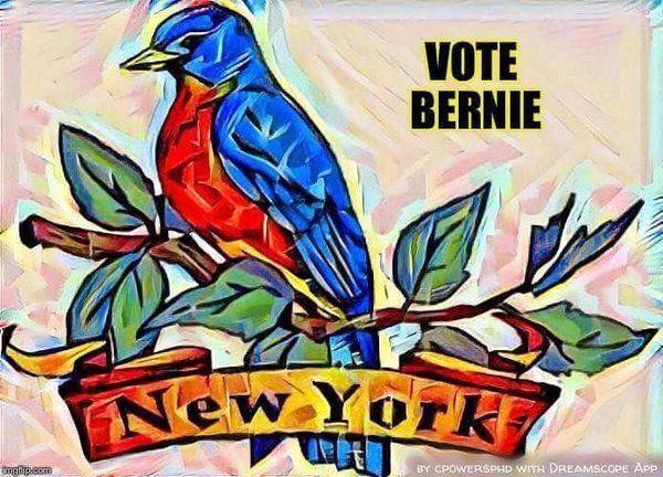 #NYforBS #BirdieSanders