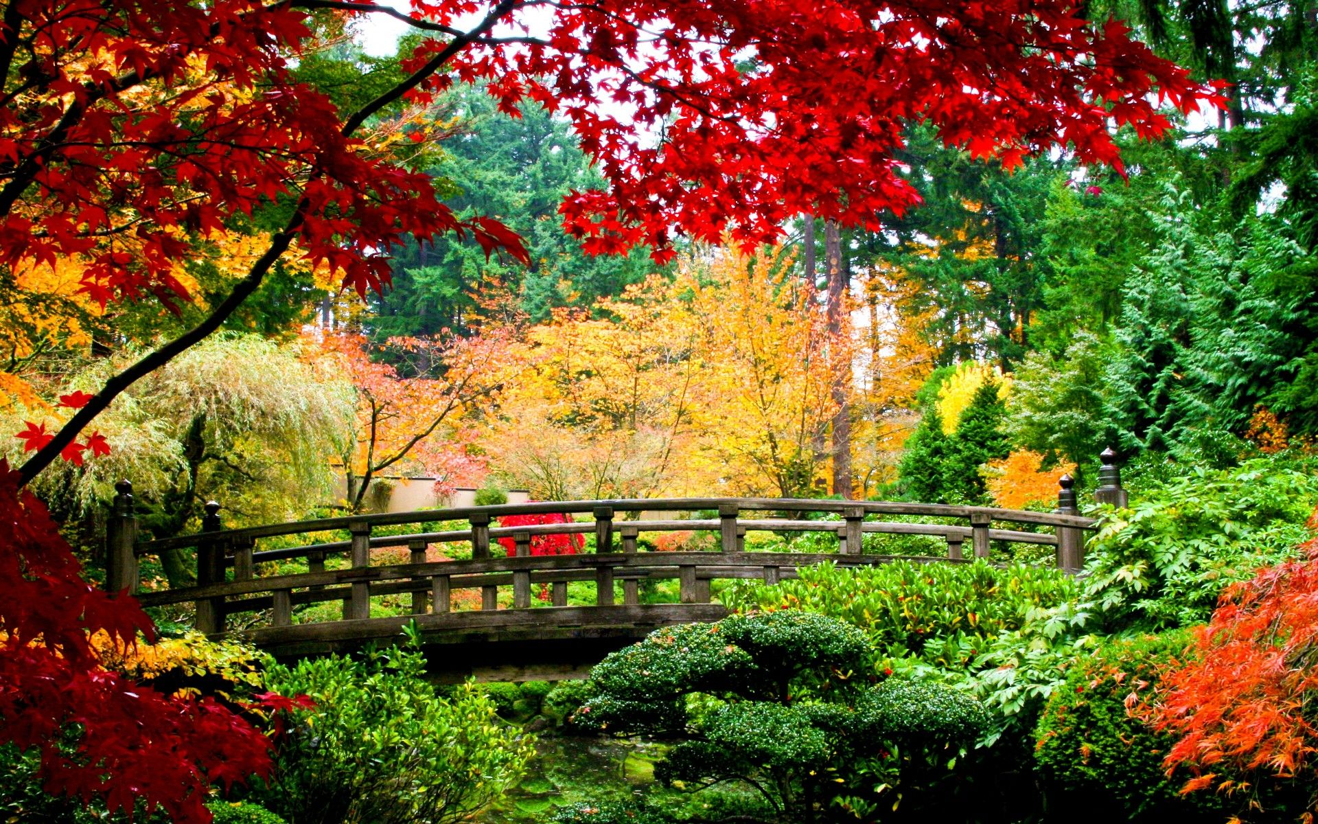 Japanese Style Garden Bridges Garden Wallpapers High Quality Download Free Hd Wallpapers