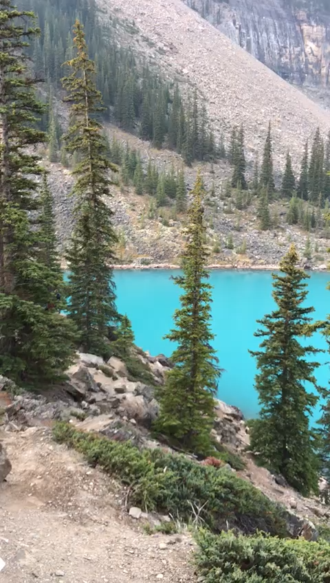 On our Calgary to Vancouver road trip we got to spend time in Banff, Canada. We visited the stunning Lake Moraine as well as Lake Louise and plenty of other of Canada's natural wonders. Check out the full road trip on the blog! || Canada Road Trip || #travelmadmum #canada #banff #lakemoraine #travel #familytravel