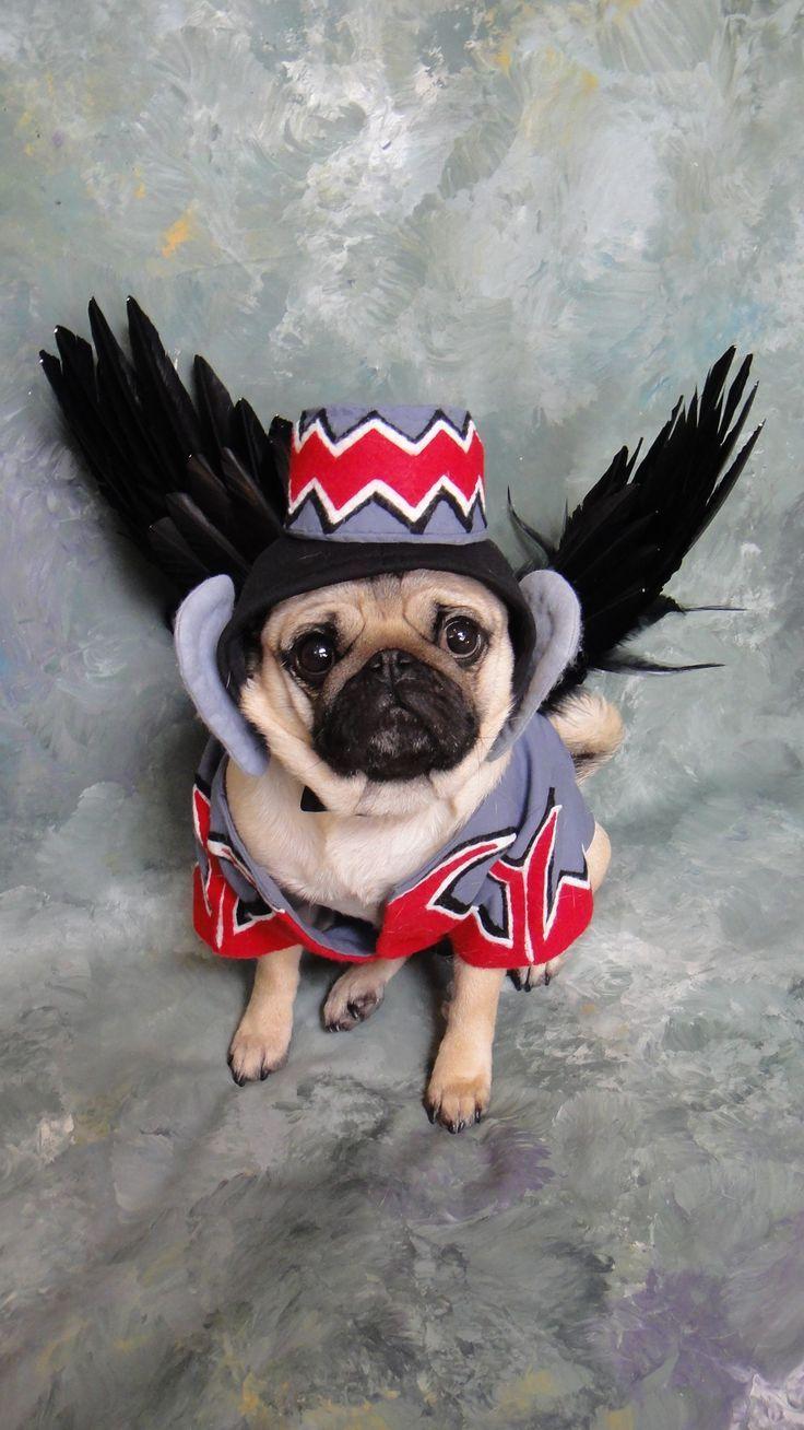 flying monkey costume for dog