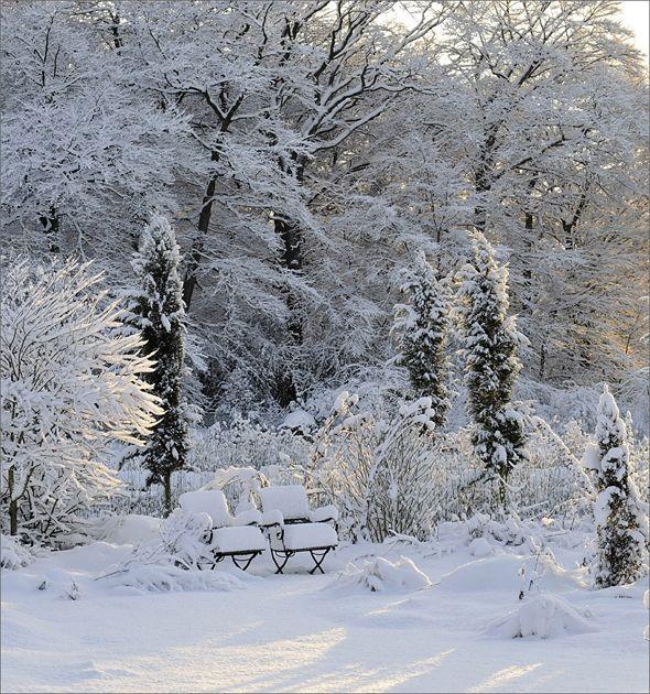 Garten Im Winter der garten im winter winter gardens winter garden