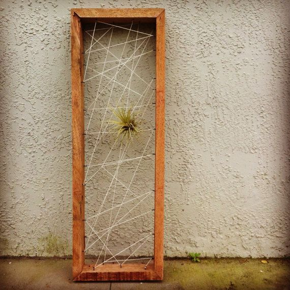 Rustic Reclaimed Recycled salvaged wood AIR PLANT holders ...