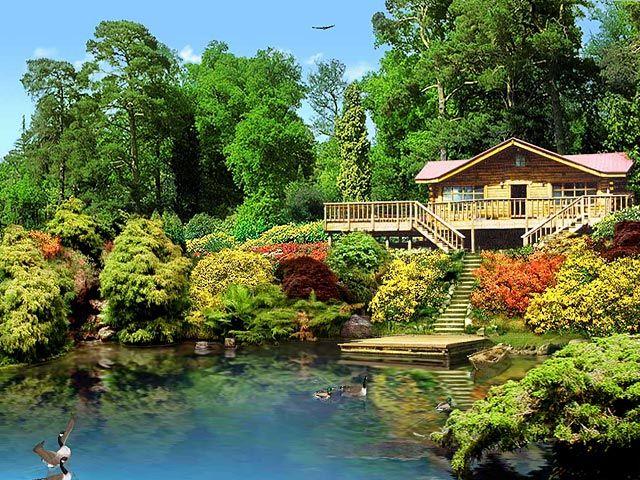 89e47eeea83820507cc258503452067c - Rob Lake Gardens By The Bay
