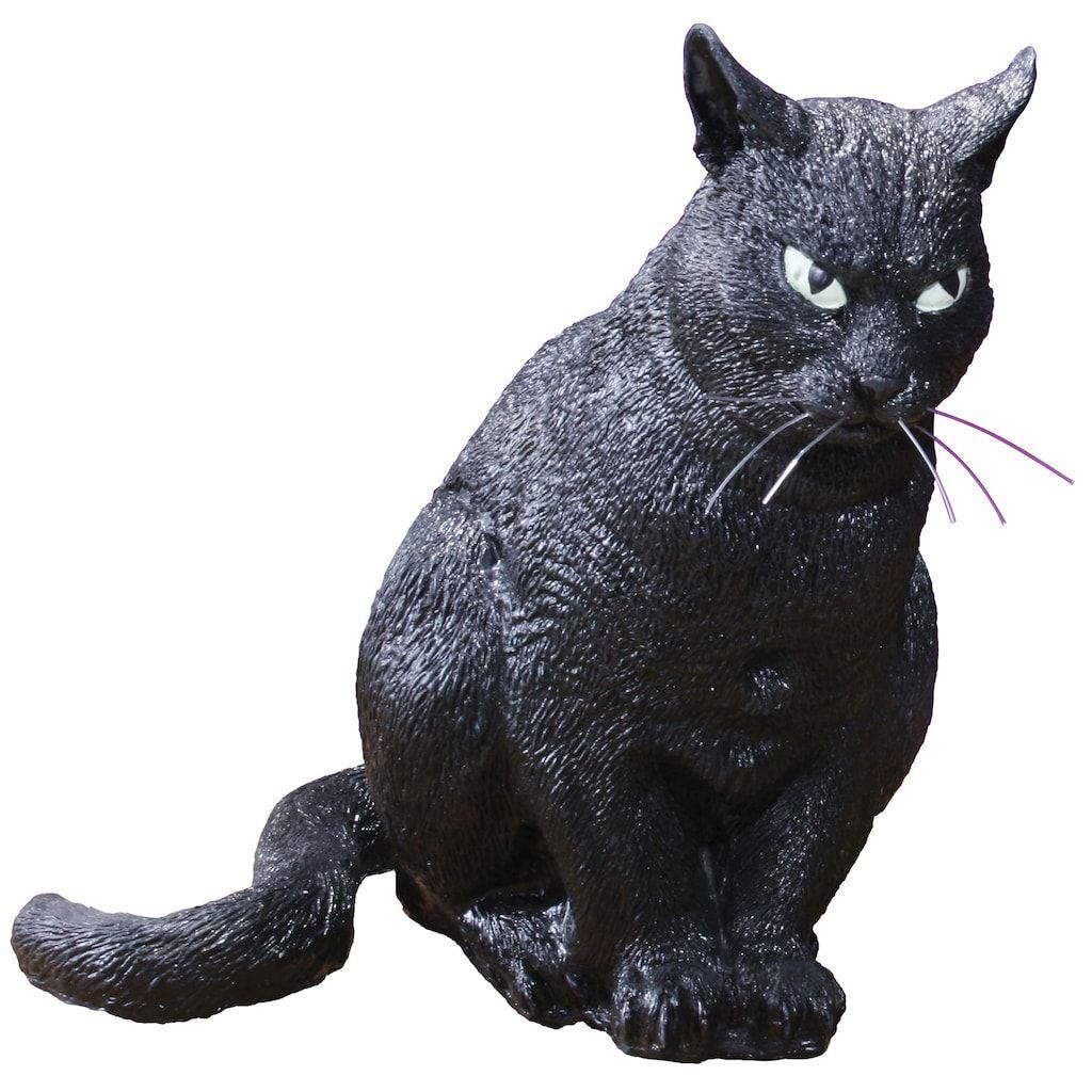 10556916 2 Jpg Scary Cat Halloween Decorations Cats