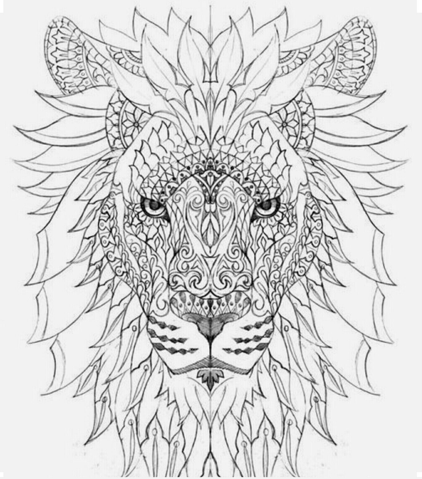 Lion Color Page With Images Lion Coloring Pages Mandala
