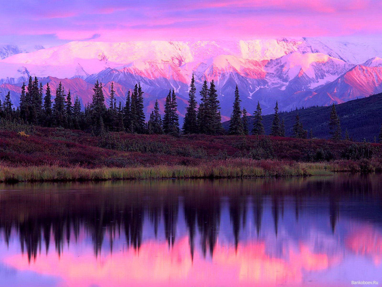 Hq paisaje rosa 1280 x 1024 wallpapers papel pintado so lovely pinterest alaska - Papel pintado paisaje ...