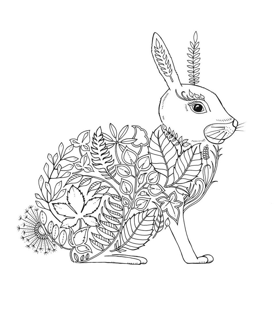 Artist Johanna Basford Enchanted Forest Coloring Pages Garden Flower Colouring Ad Basford Coloring Book Johanna Basford Coloring Book Enchanted Forest Coloring