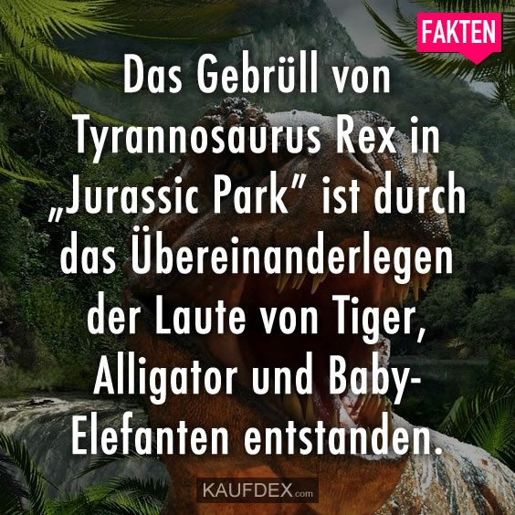 """Das Gebrüll von Tyrannosaurus Rex in """"Jurrassic Park"""" ist durch das #tyrannosaurusrex"""