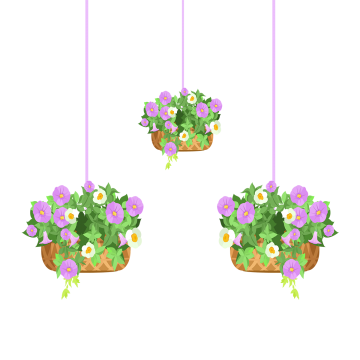 Hanging Flower Pots Illustration Flowers Pot Hanging Png And Vector With Transparent Background For Free Download Hanging Flower Pots Hanging Plants Hanging Plants Outdoor
