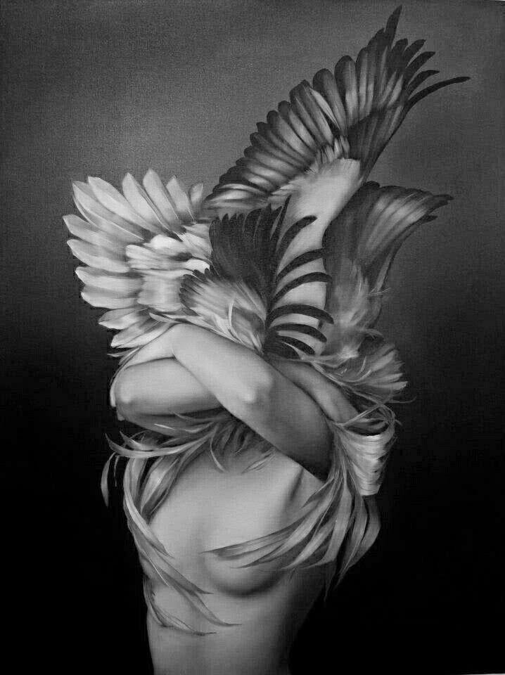 Amy Judd... | Kai Fine Art