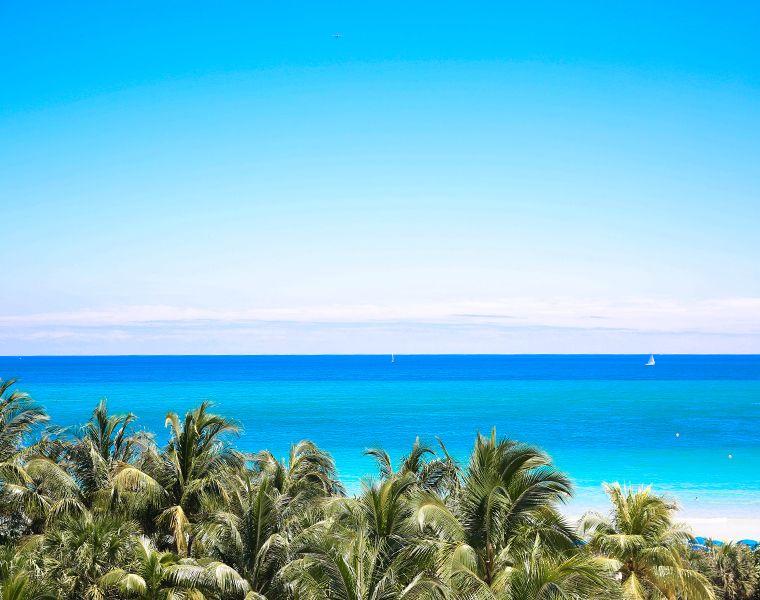Soho-beach-house-miami-14