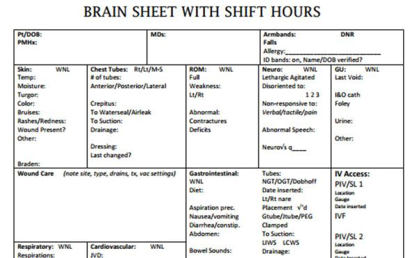 The  Best Nurse Brain Sheets  Nurse Brain Sheet Nursing
