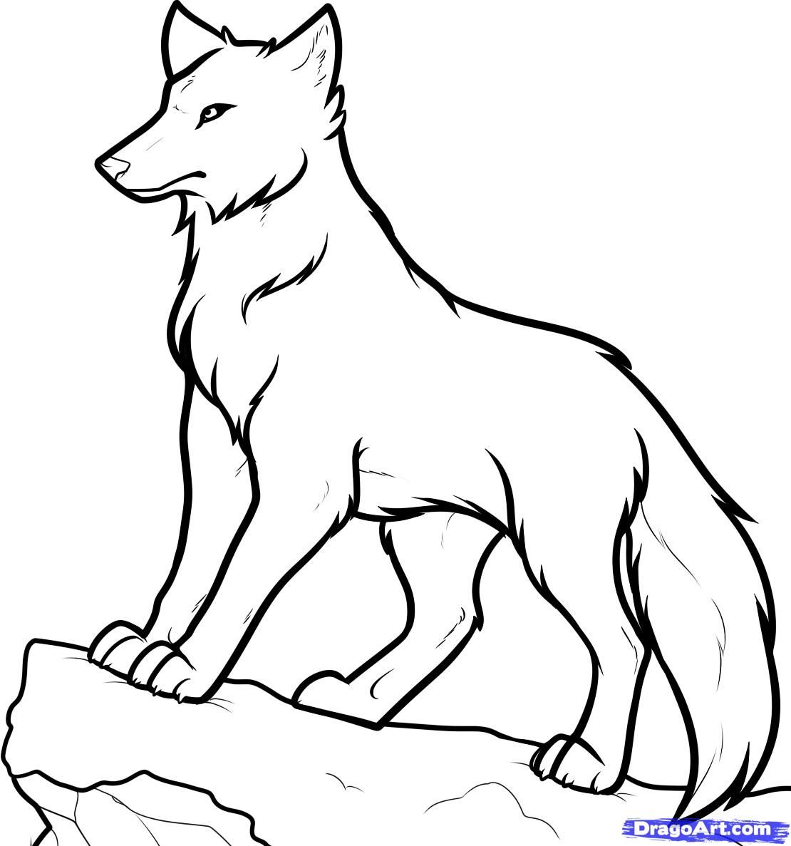 How To Draw Anime Wolves Anime Wolves Step By Step Anime Animals Anime Draw Japanese Anime Draw Man Cartoon Wolf Drawing Anime Wolf Easy Cartoon Drawings