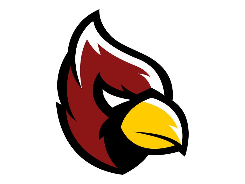 Cardinal Head Sports Team Logos Bird Logos Cardinal
