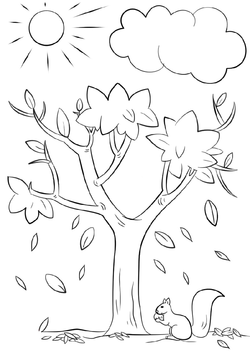 Tree Coloring Page K5 Worksheets Tree Coloring Page Fall Coloring Pages Fall Coloring Sheets [ 1130 x 800 Pixel ]