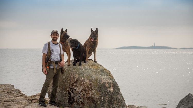 Free – Dog Training – Become A Professional Dog Trainer  #DogTraining #DogTrainer #DogGuilde #Learn #Free #Udemy #UdemyFree