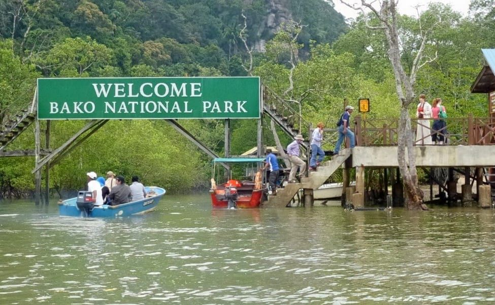 Day Trip To Bako National Park In Kuching Malaysia National Parks Sightseeing Day Tours