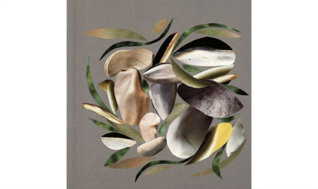 12 Alain Passard Collages and Dishes by (image 9) - BLOUIN ARTINFO , The Premier…