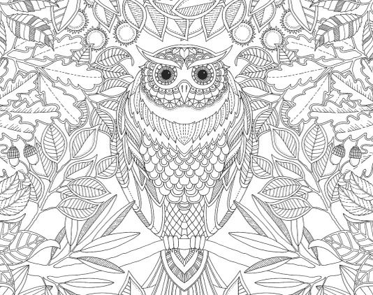 garden coloring pages for adults coloring book for adults secret garden reference images - Color Books For Adults