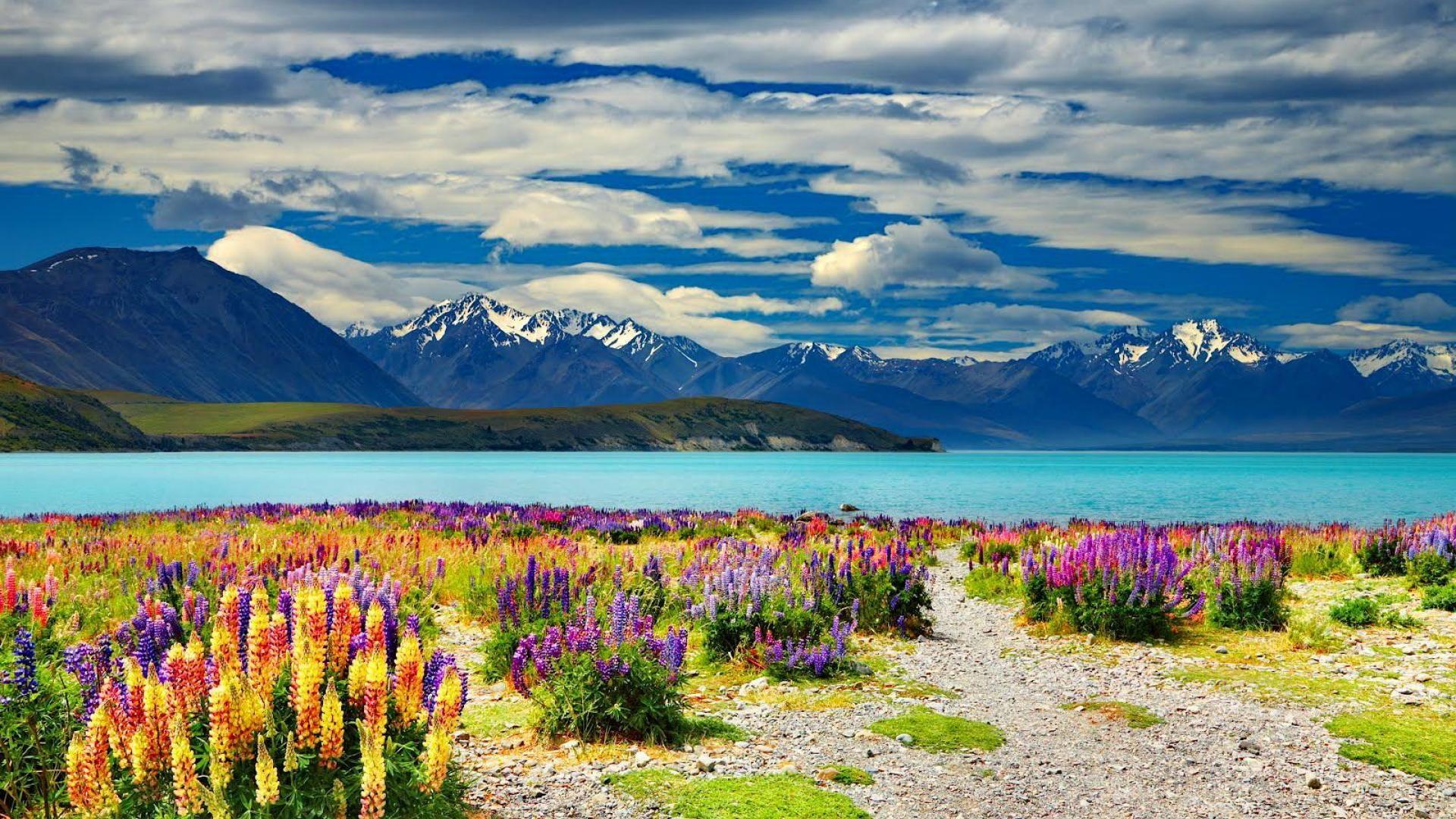 Lake Tekapo Wallpaper HD 1 1920 X 1080 Lake tekapo