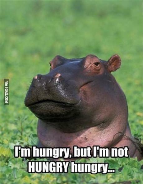 I'm hungry...