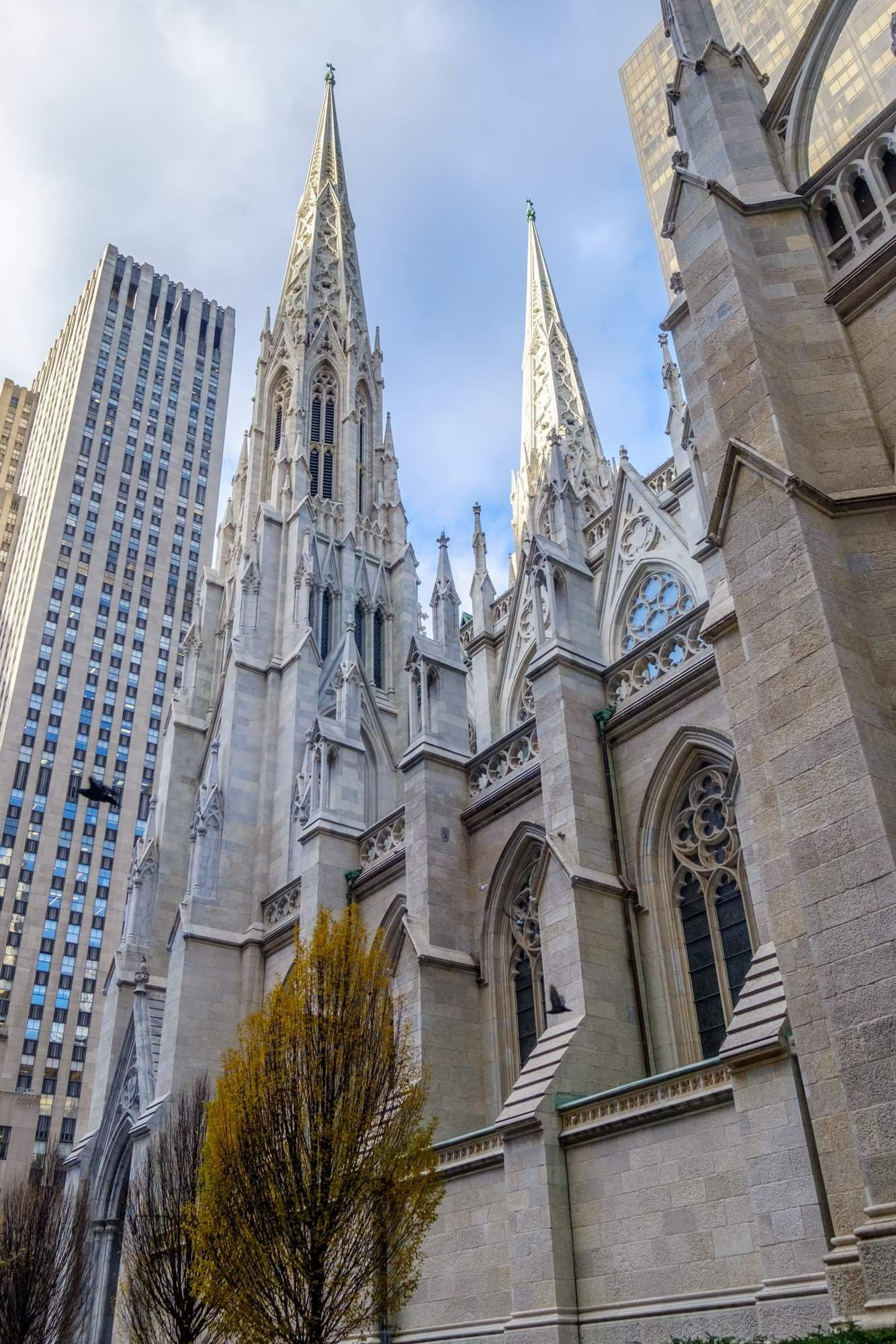 St Patrick's, NYC Barcelona cathedral, New york city