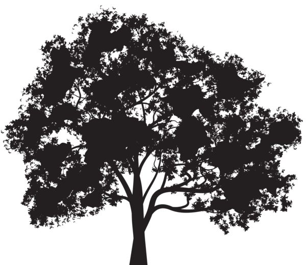 Tree Silhouette Png Clip Art Image Vector Trees Tree Silhouette Silhouette Png