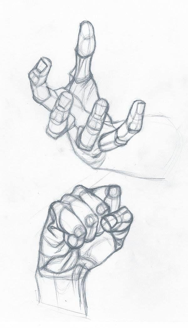 12473875 802028206593214 577937561980708517 O Jpg 600 1044 Anatomy Drawing Anatomy Art Hand Drawing Reference