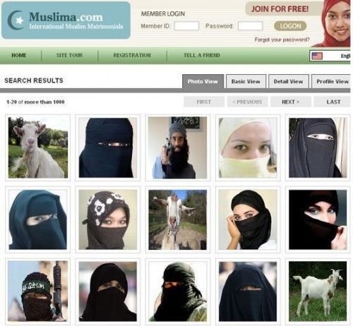 muslim dating free site