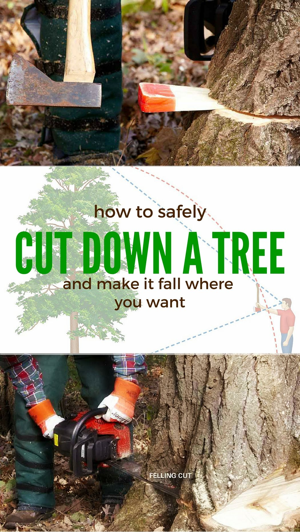 Cut down a tree safely yards gardens and homesteads cut down a tree safely solutioingenieria Choice Image