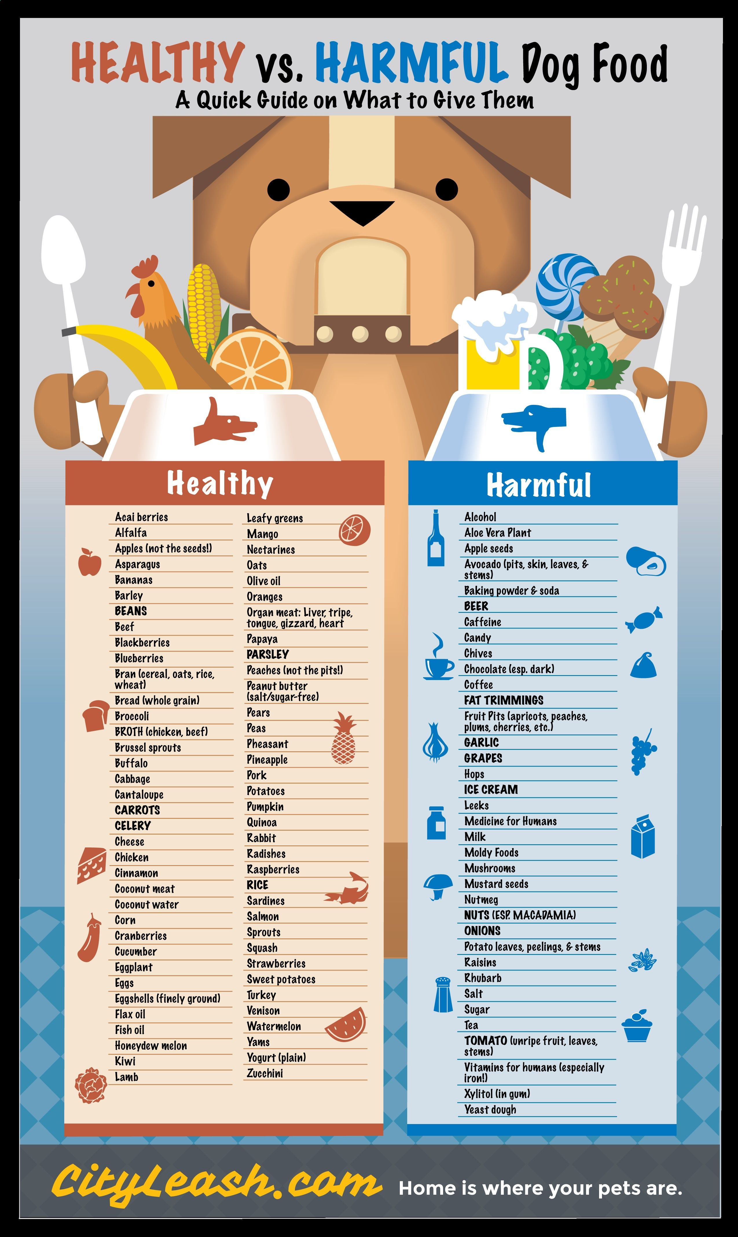 A Quick Guide On What Kinds Of Food To Give Your Dogs 4knines