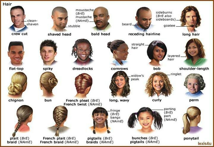 hair styling terms vocabulary hairstyles vocabulary 1260