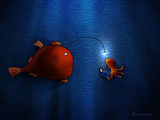 SO CUTE (With images) Angler fish, Octopus art, History