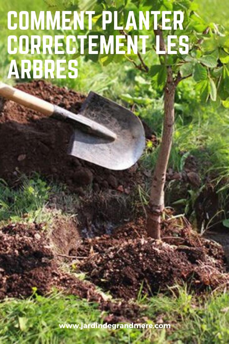 Comment Planter Un Arbre Fruitier comment planter correctement les arbres | comment planter
