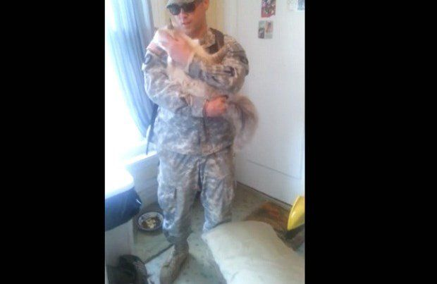 Cat gives soldier a great welcome home greeting this its so cute cat gives soldier a great welcome home greeting this its so m4hsunfo