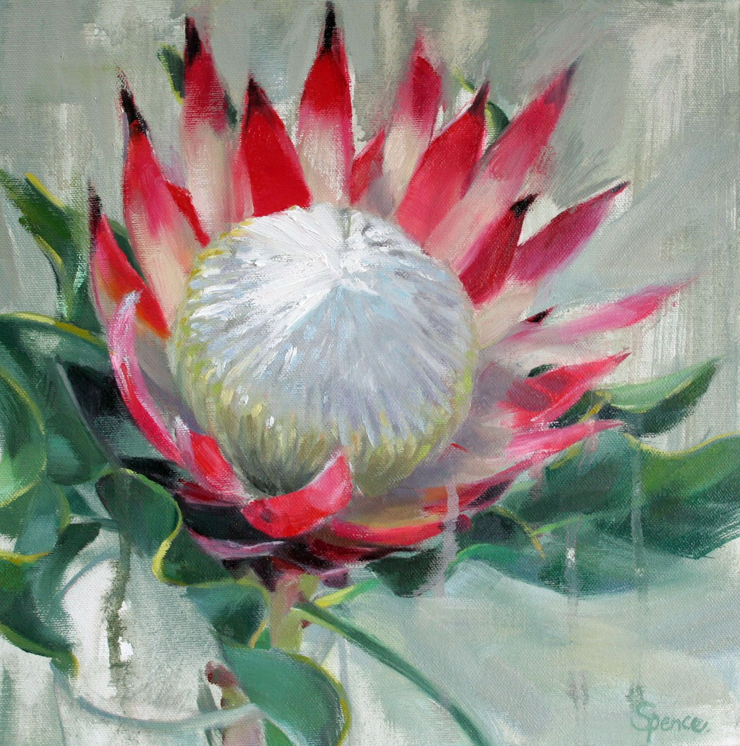 Protea Oil Painting 30 X 30 Protea Art Floral Painting Flower Painting