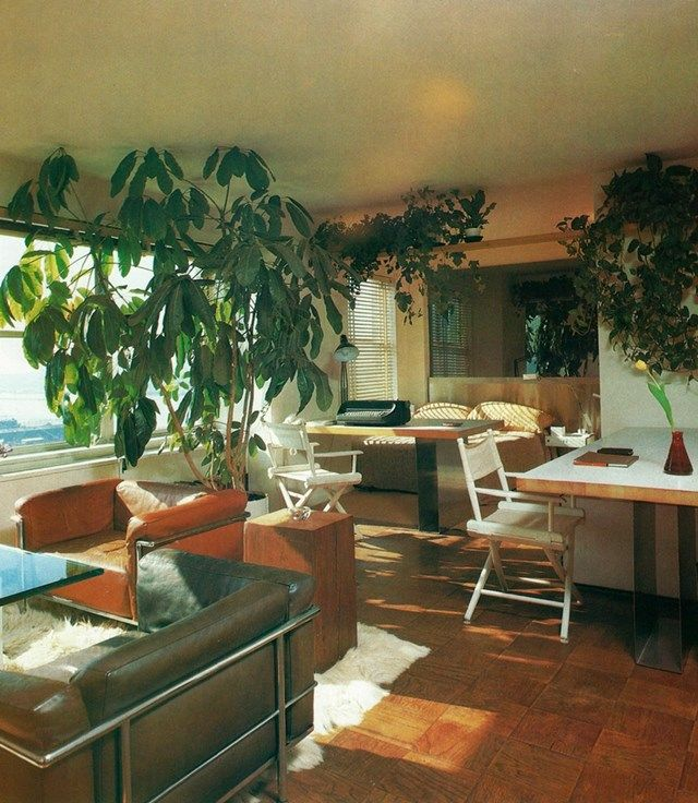 House plant heaven books interiors and palm springs mid century modern also rh pinterest
