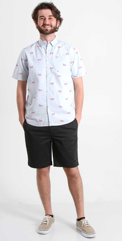 1897 Flamingo Print BBQ Shirt in Sky Blue for Men WN436-JP525-BLU